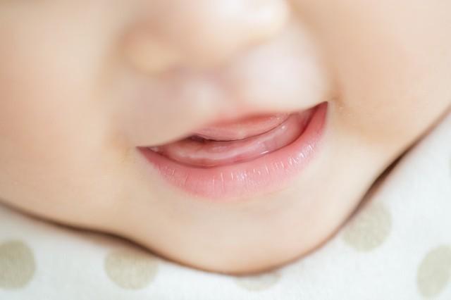 歯が生える前