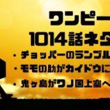 ワンピース 1014話 ネタバレ