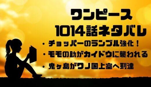 ワンピース1014話のネタバレ考察感想!モモの助ピンチ!チョッパーのランブル強化!
